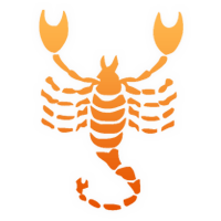 skorpion und fisch sexleben